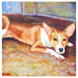 My Dog Ralph- Who Always Made Life an Adventure